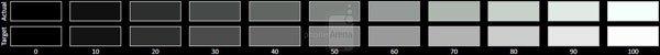 Đánh giá Xiaomi Mi 9 từ thiết kế, màn hình đến hiệu năng 6